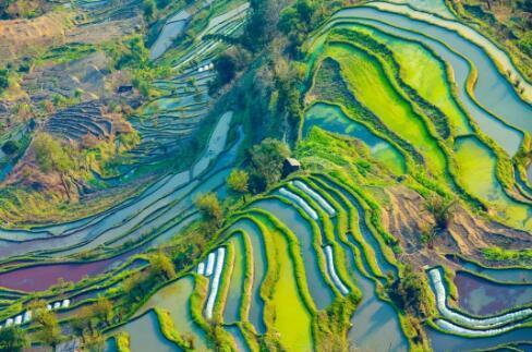 三季度文旅消费高速增长 华中天创坚持深耕文旅产业