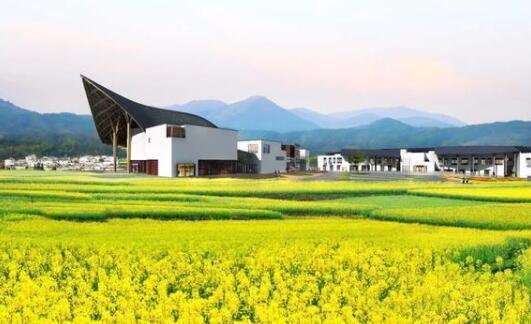 武汉建筑设计院:胡适博物馆设计方案