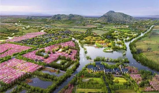 武汉建筑设计专家:乡村振兴难题如何解决?