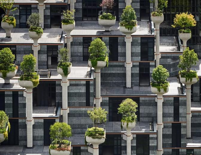 武汉建筑设计公司:1000棵树项目实景