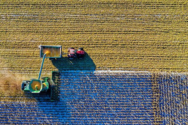 农业农村部:未来,休闲农业的潜力将进一步被挖掘!