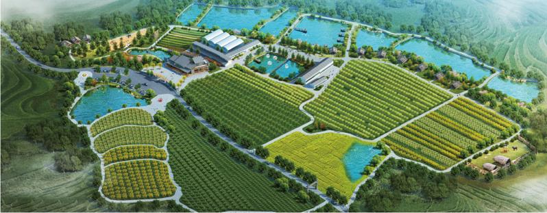 武汉旅游规划设计案例:百丰生态园