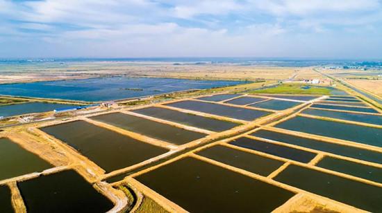 自然资源部:今后,土地计划指标跟着项目走!