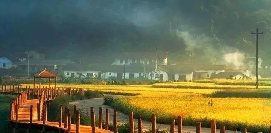 武汉旅游规划公司:田园康养的新模式