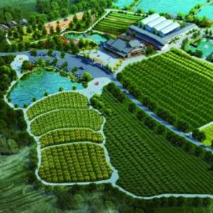 华中天创文旅规划-百丰生态园